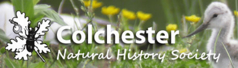 Colchester Natural History Society
